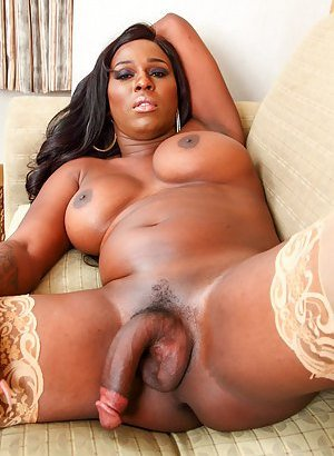 Ebony Tranny Pictures